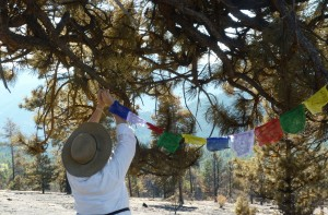 Putting Up Prayer Flags After the Fire